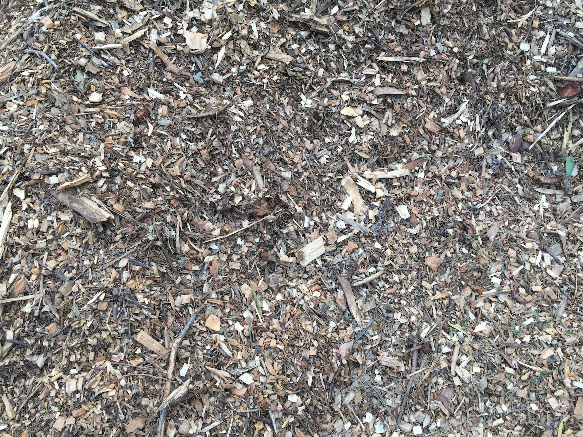 Landscaping Bark Suppliers : Mulch and bark donnellys garden supplies